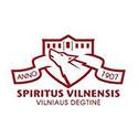 Vilniaus-degtine